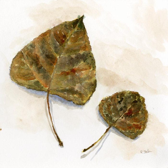 leaf pair - watercolor and ink - by rebecca stahr