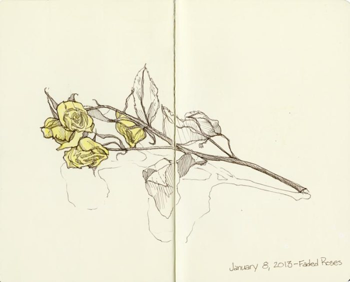 2013_sketchbook_ink_01082013_FadedRoses001_lowrez