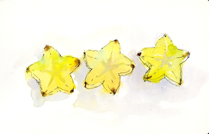 2013_Watercolor_StarFruitSlices001