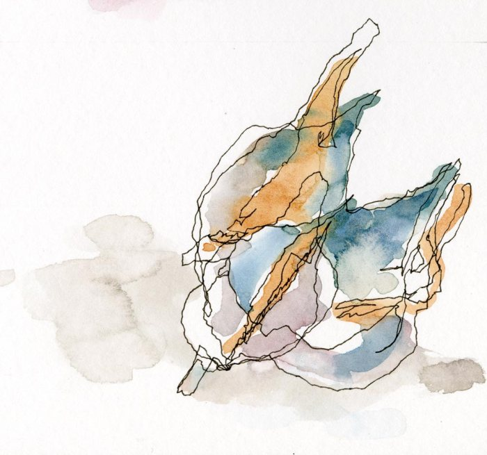 2013_watercolor_MilkweedPods002_web